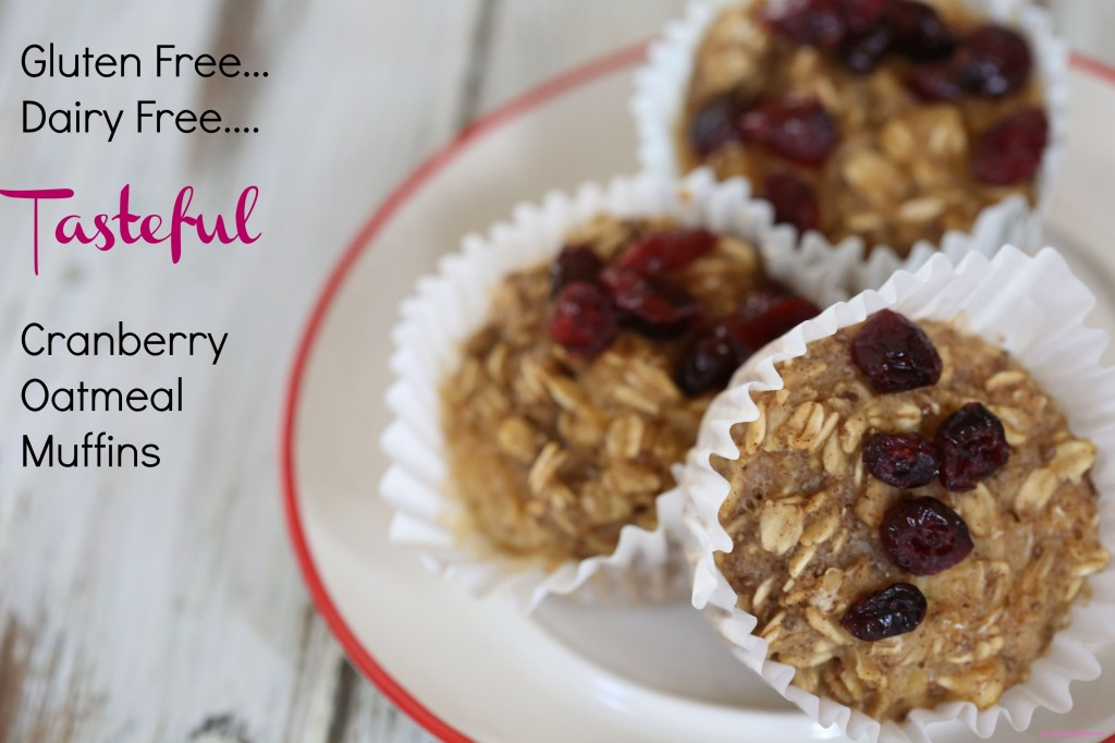 easy cranberry muffins